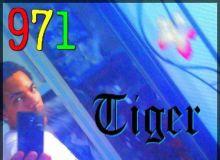 chabin971-93 - profil